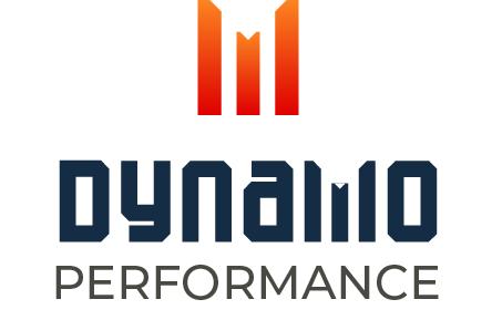 Dynamo Performance